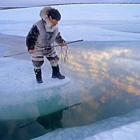 Baffin Island, Nunavut, Canada. Inuit hunter, Jayko Apak (MR) waits for seals on ice floe near Clyde River.