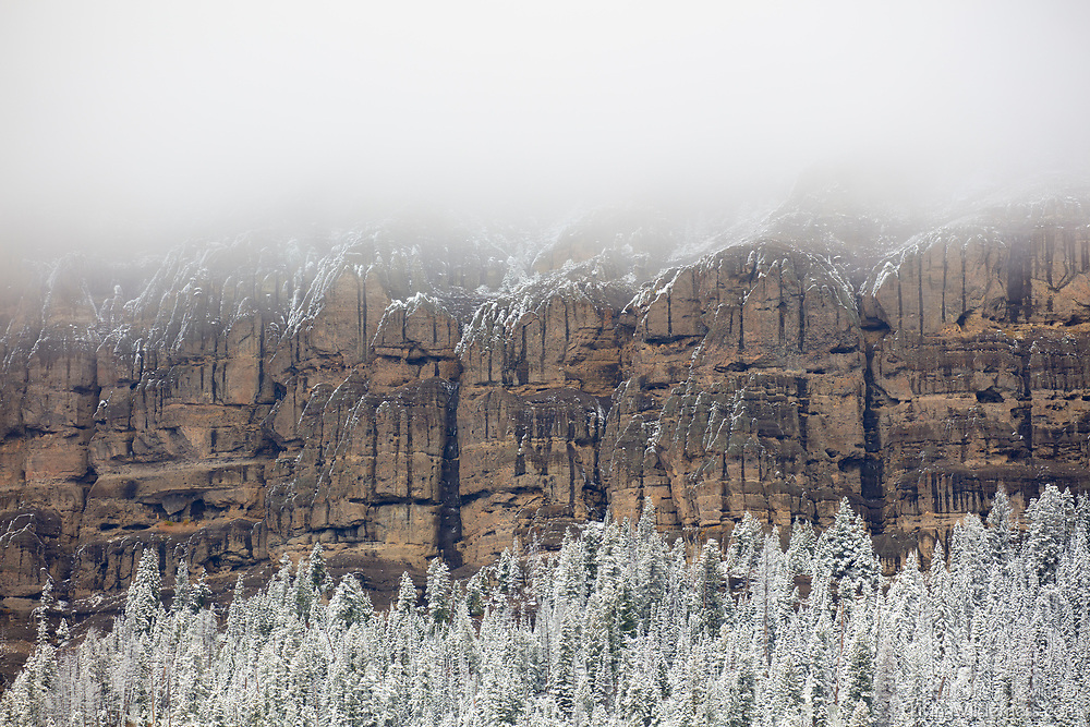 A strip of Mount Hornaday is visible between snow clouds and trees coated in fresh snow in Yellowstone National Park, Wyoming. Mount Hornaday is a 10,003-foot (3,049-meter) mountain that is part of the Absaroka Range.
