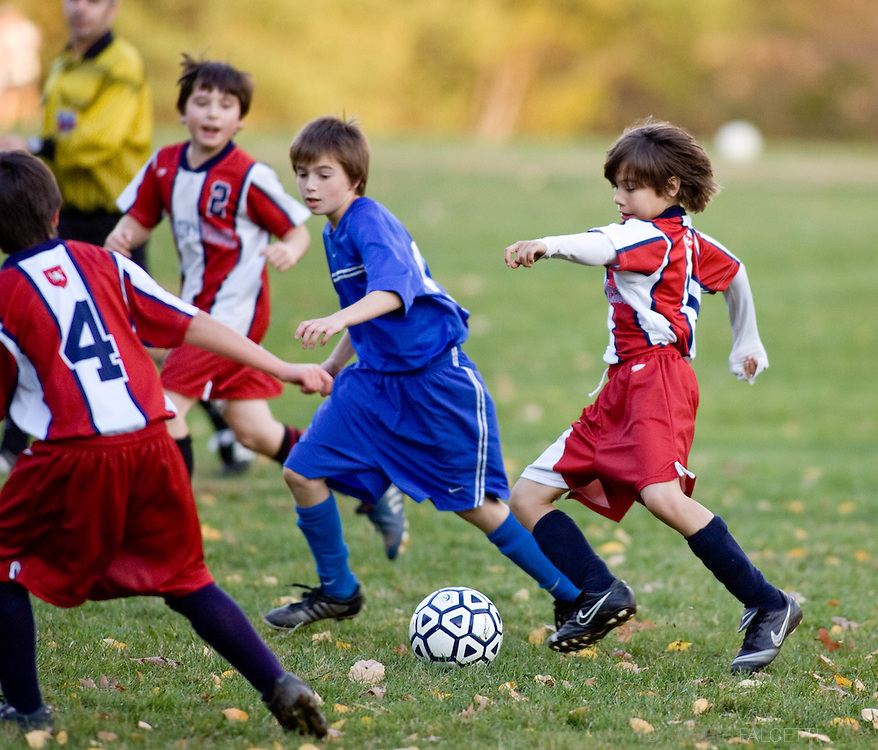 The Master's School, West Simsbury, CT. 2010-2011. Boy's Middle School Soccer.  (Photo by Robert Falcetti). .