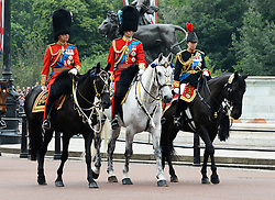 © Licensed to London News Pictures. 14/06/2014. London, UK Prince Charles Prince of Wales; Prince William Duke of Cambridge; Princess Anne The Princess RoyalTrooping the Colour, Buckingham Palace, London UK, 14 June 2014. Photo credit : Mike Webster/PIQ/LNP