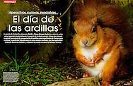 Publication: MUY INTERESANTE (Spain); No 348, May 2010.Photography by Heidi & Hans-Jürgen Koch/animal-affairs.com