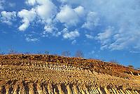 Cerro erosionado, Carora, Estado Lara, Venezuela