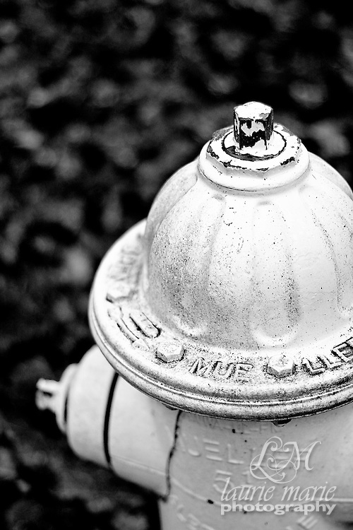 Fire hydrant in a park - BW vertical
