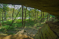 This is one of the caves in Wildcat Den State Park. It was a bit tricky getting my tripod and camera up here to take a picture.