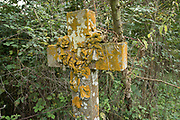 Lichen covered cross shaped gravestone in British countryside in September near to Coughton, England, United Kingdom.