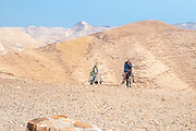 Beduin ride donkeys in the Negev Desert. Photographed in Nahal  Tzeelim [Tze'eelim Stream] in December
