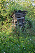 Collapsed outdoor toilet shack in overgrown land at Bakonygyirot, Gyor-Moson-Sopron, Hungary