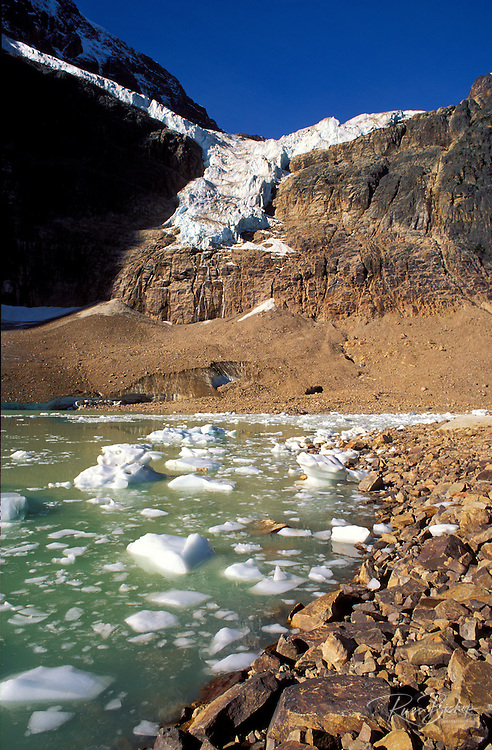 The Angel Glacier and icebergs  under Mount Edith Cavell, Jasper National Park, Alberta, Canada
