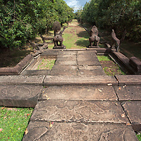 A few large sized natural paving stones pave the path to guarding lions in Banteay Samre.