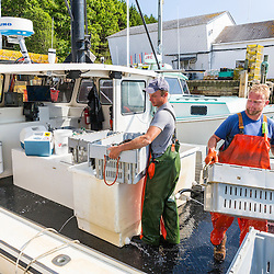 """Captain Matt Clemmons (left) and sternman Collin Grady unload lobster aboard """"Mean Kathleen"""" at Potts Harbor Lobster in Harpswell, Maine."""