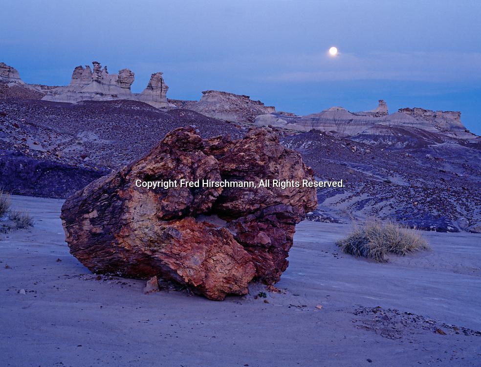 Moonrise over petrified log and hoodoos at Blue Mesa, Petrified Forest National Park, Arizona.