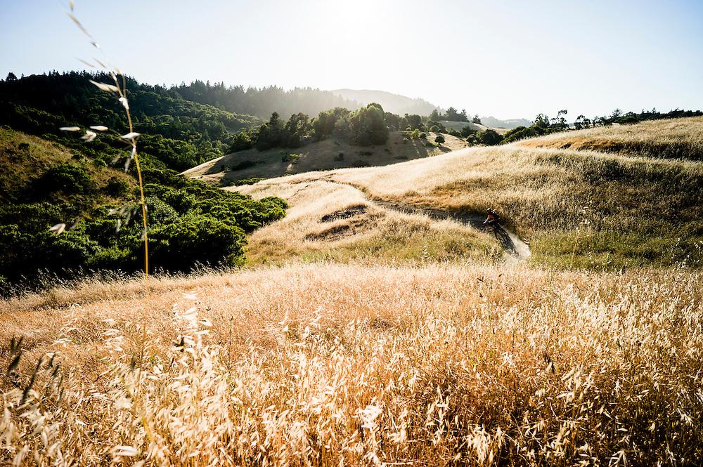 Patchen Homitz, Tamarancho Trail, Marin, California.