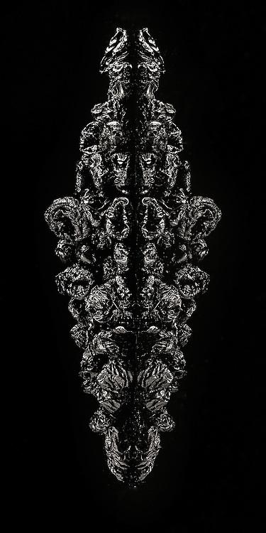 Autonomous photography of still life's on a black back ground
