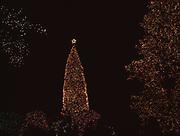"National Enquirer Christmas display including the ""World's Largest Christmas Tree,"" Lantana, Florida."