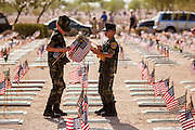 26 MAY 2012 - PHOENIX, AZ: Members of the Firebirds Young Marines place American flags on veterans' grave at the National Memorial Cemetery in Phoenix, AZ, Saturday. Hundreds of Boy and Girl Scouts along with the Young Marines, a Scout like organization, place American flags on veterans' graves in the National Memorial Cemetery in Phoenix every year on the Saturday before Memorial Day.     PHOTO BY JACK KURTZ