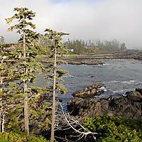 North America, Canada, British Columbia, Vancouver Island.  View at Black Rock Oceanfront Resort.