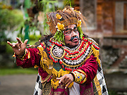 19 JULY 2016 - TAMPAKSIRING, GIANYAR, BALI, INDONESIA:  A dancer performs on the first day of a ceremony to honor the anniversary Pura Agung temple, one of the most important Hindu temples on Bali. This year's ceremony is the most important in years because it falls on the 50 year cycle of the temple's founding. This year's ceremony lasts for 11 days.     PHOTO BY JACK KURTZ