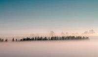 Krynki woj podlaskie, 25.01.2013. n/z zjawisko inwersji skutkujace gesta mgla tuz nad ziemia w sloneczny dzien fot Michal Kosc / AGENCJA WSCHOD