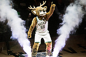 Bucks v. Celtics (Jan 2020)