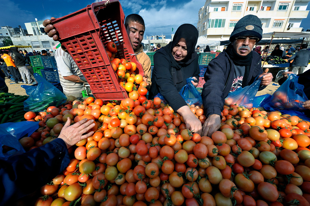 Tomatoes being sold in the market of the Nuseirat refugee camp in the middle of the Gaza strip.  While Gazans grow much of their own food, repressive restrictions on land use imposed by the Israeli military means some food has to be imported at great cost from Egypt and Israel....