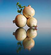 Tri white Pomegrate