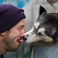 Dog licks the face of its owner during the FISTC Dog Cart European Championships in Venek (about 136 km Norht-West of capital city Budapest), Hungary on November 22, 2014. ATTILA VOLGYI