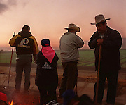 Faustino Farias, far right, crossed the U.S./Mexican border at 2 a.m., signed up for a job at 3 a.m., and waited to start hoeing lettuce until 7 a.m. when the moisture level was right. For none of the waiting hours was he paid. January 9, 2001.