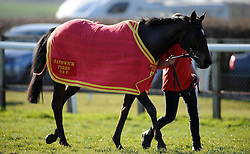 Bella, trained by David Pipe took a nasty fall during the British Stallion Studs Ebf Mares' 'national Hunt' Novices' Hurdle (Class 4) (4YO plus) but was able to make it's way back to the ring. - Photo mandatory by-line: Harry Trump/JMP - Mobile: 07966 386802 - 17/02/15 - SPORT - Equestrian - Horse Racing - Taunton Racecourse, Somerset, England.
