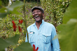 Elderly Man laughing while working on his allotment,