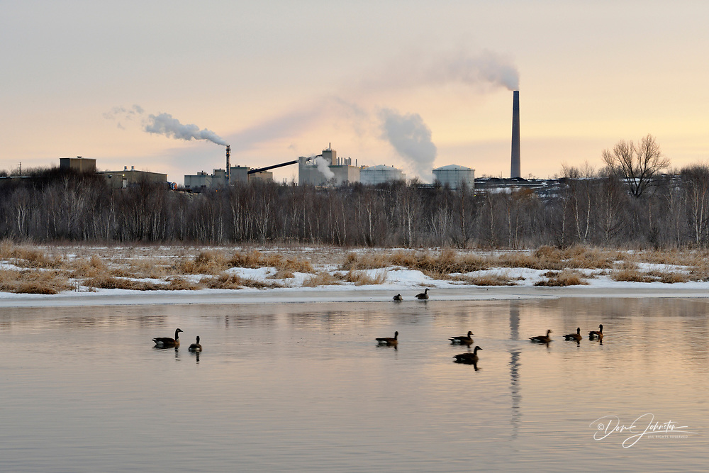 Junction Creek with waterfowl in early spring at sunrise, Greater Sudbury, Ontario, Canada