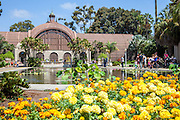 The Reflection Pool at the Botanical Building at Balboa Park San Diego