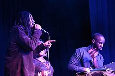 Ariwa Showcase - Mad Professor and friends - Fairfield Halls, Croydon - 29.03.15