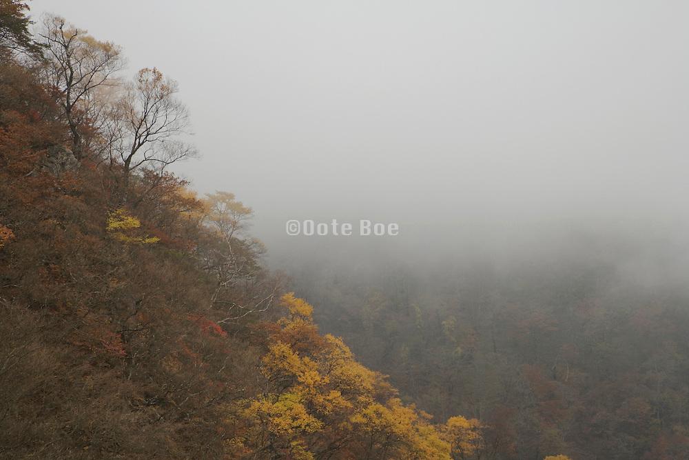mountain view in foggy weather during fall season Japan Akechidaira