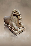 Ancient Egyptian statue of a Ram protecting King Amenhotep III, granite, New Kingdom, early 18th Dynasty (1390-1353), Karnak, Temple of Mut. Egyptian Museum, Turin. <br /> <br /> a figure of Amenhotep III as Osiris stands between the legs of the Ram. there is a hole in the top of the rams head for the insertion of a solar disk associating it to the god Amon, whose animal form is the ram, and with the sun god Re. The statue may have stood in the Soleb of Nubia. Drovetti Collection. C 836 .<br /> <br /> If you prefer to buy from our ALAMY PHOTO LIBRARY  Collection visit : https://www.alamy.com/portfolio/paul-williams-funkystock/ancient-egyptian-art-artefacts.html  . Type -   Turin   - into the LOWER SEARCH WITHIN GALLERY box. Refine search by adding background colour, subject etc<br /> <br /> Visit our ANCIENT WORLD PHOTO COLLECTIONS for more photos to download or buy as wall art prints https://funkystock.photoshelter.com/gallery-collection/Ancient-World-Art-Antiquities-Historic-Sites-Pictures-Images-of/C00006u26yqSkDOM