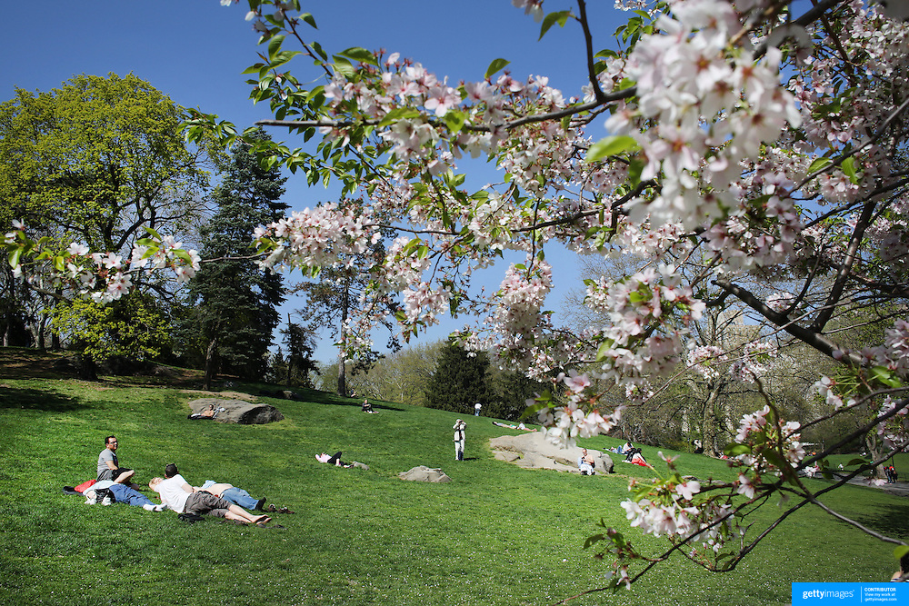 People relax during a warm spring day in Central Park, Manhattan, New York, USA. Photo Tim Clayton