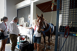 Poespass of Boulanger Karin (BEL) at the clinic in the Kentucky Horse Park recovering well after a colic operation visited by chef de mission Ingmar Devos<br /> World Equestrian Games Lexington - Kentucky 2010<br /> © Hippo Foto - Dirk Caremans