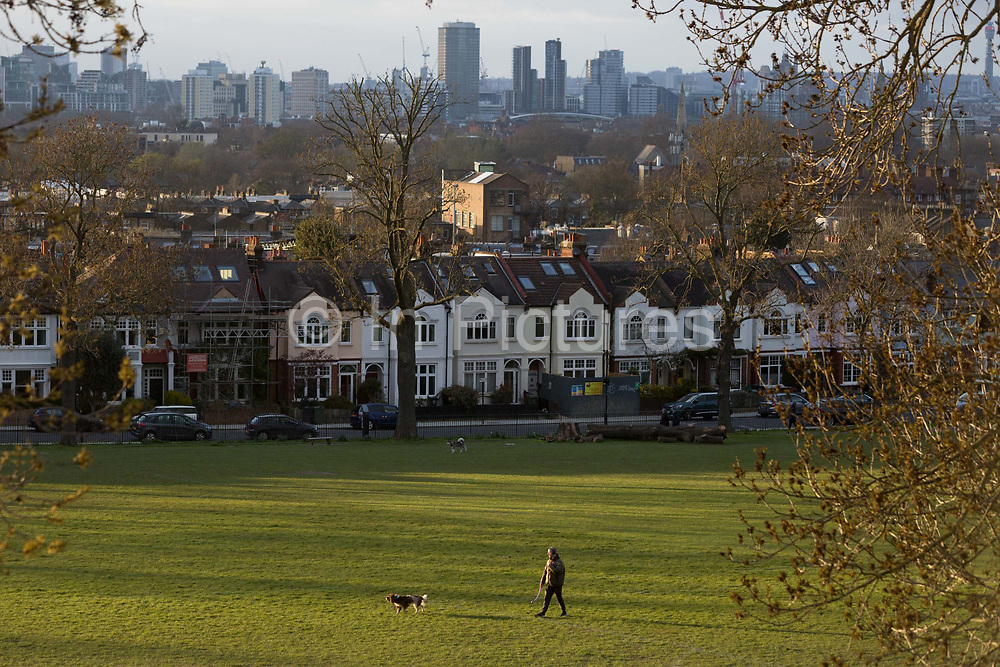 As the second week of the Coronavirus lockdown continues around the capital, and the UK death toll rising by 563 to 2,325, with 800,000 reported cases of Covid-19 worldwide, in accordance with the governments advice for social distancing, a man exercises his dog with period homes and the city beyond, in Ruskin Park, a south London green space now being used more by isolating families and households, on 31st March 2020, in London, England.