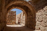 Ruins of Avdat, Avdat, Negev, Israel Israele,Rovine di Avdat, Negev, Israele.