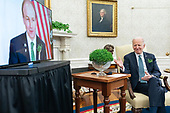 March 17, 2021 (DC): President Biden Meets Virtually With Ireland's Prime Minister Micheal Martin