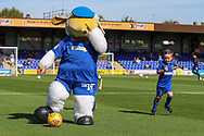 Haydon the Womble warming up with Mascot prior to kick off during the EFL Sky Bet League 1 match between AFC Wimbledon and Shrewsbury Town at the Cherry Red Records Stadium, Kingston, England on 14 September 2019.