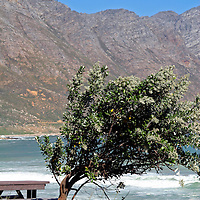 Africa, South Africa, Hermanus. Picnic spot along the Whale Coast ddrive near Hermanus.