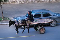 Donkey cart and owner pass a Mercedes along Boulevard Allal Al Fassi, Marrakech.
