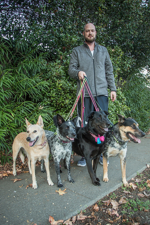 """Television creative director Brent Redford is out for an evening walk  in Martinez, CA, with his dogs Bob, Jody, Daisy and Bobo.  """"I grew up Mormon...my three brothers have nine kids...I have four dogs."""""""
