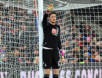 Football - 2016 / 2017 Premier League - Crystal Palace vs. Swansea City<br /> <br /> Wayne Hennessey of Crystal Palace at Selhurst Park.<br /> <br /> COLORSPORT/ANDREW COWIE