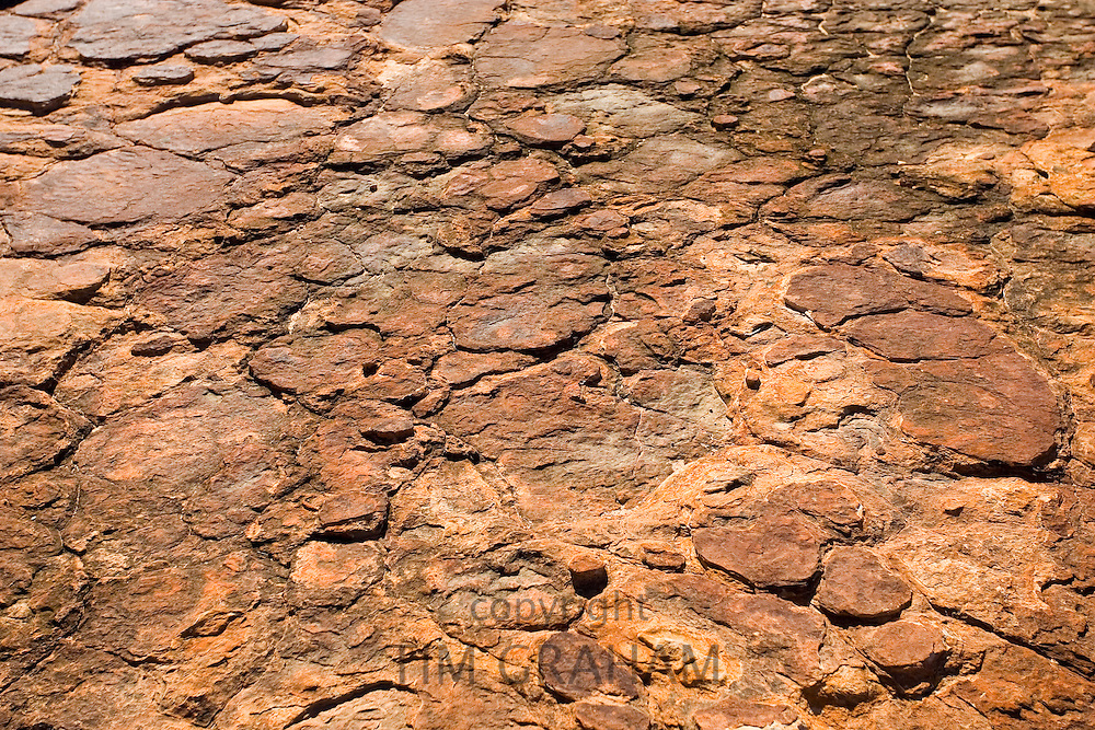 Cracked Mereenie sandstone at King's Canyon, Northern Territory, Australia