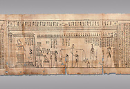 Ancient Egyptian Book of the Dead papyrus - Spell 126 - what to say in the judgement before Osiris, Iufankh's Book of the Dead, Ptolemaic period (332-30BC).Turin Egyptian Museum. Grey Background<br /> <br /> <br /> Spell 125 instruct the deceased as to waht to say infront of Osiris and the Forty Two Judges in the Hall of Two Maat, the netherworlds Judgement Hall. <br /> <br /> The translation of  Iuefankh's Book of the Dead papyrus by Richard Lepsius marked a truning point in the studies of ancient Egyptian funereal studies. .<br /> <br /> If you prefer to buy from our ALAMY PHOTO LIBRARY  Collection visit : https://www.alamy.com/portfolio/paul-williams-funkystock/ancient-egyptian-art-artefacts.html  . Type -   Turin   - into the LOWER SEARCH WITHIN GALLERY box. Refine search by adding background colour, subject etc<br /> <br /> Visit our ANCIENT WORLD PHOTO COLLECTIONS for more photos to download or buy as wall art prints https://funkystock.photoshelter.com/gallery-collection/Ancient-World-Art-Antiquities-Historic-Sites-Pictures-Images-of/C00006u26yqSkDOM