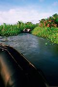 Sepik River, Papua New Guinea<br />