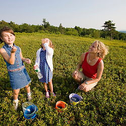 A woman and two young girls pick blueberries on a hilltop in Alton, New Hampshire.