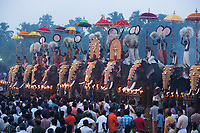 """Tusked elephants line up at the Arattupuzha Pooram, the oldest temple festival in Kerala, with a continuing tradition of 1425 year.<br /> Available as Fine Art Print in the following sizes:<br /> 08""""x12""""US$   100.00<br /> 10""""x15""""US$ 150.00<br /> 12""""x18""""US$ 200.00<br /> 16""""x24""""US$ 300.00<br /> 20""""x30""""US$ 500.00"""