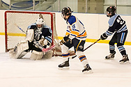 Town of Newburgh, New York - Washingtonville plays John Jay in an Hudson Valley High School Ice Hockey Association varsity game at Ice Time Sports Complex on Dec. 8, 2018.